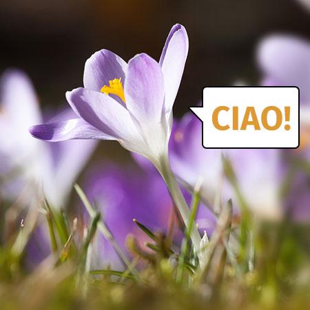 Der Frühjahrs-Check